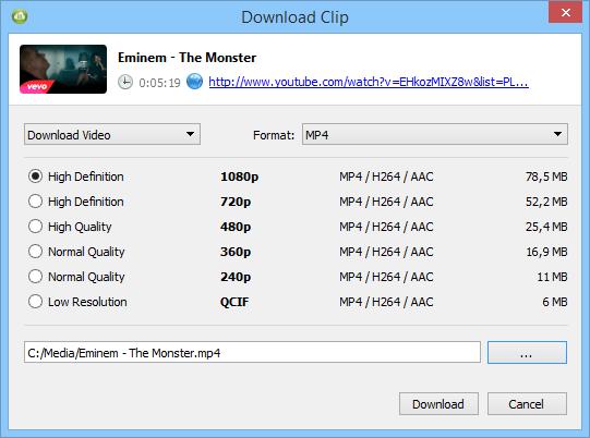 4K Video Downloader windows
