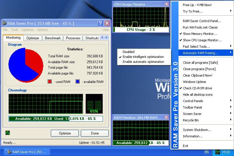 RAM Saver Professional windows r