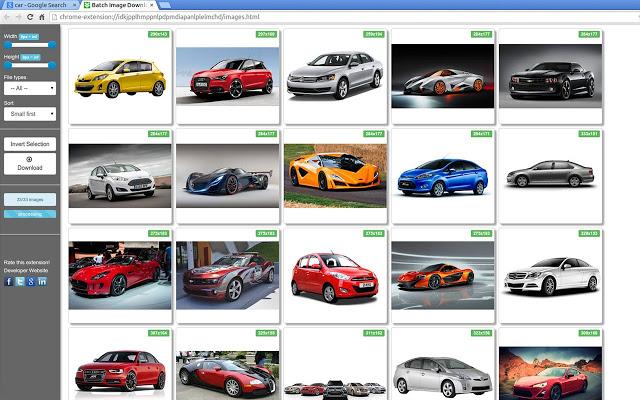 Bulk Image Downloader windows