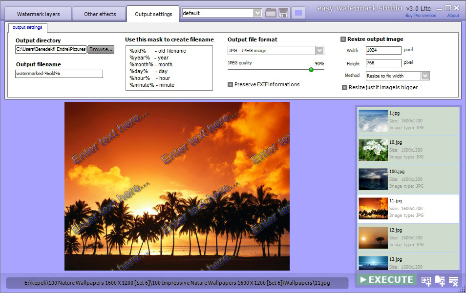 Easy Watermark Studio Pro windows