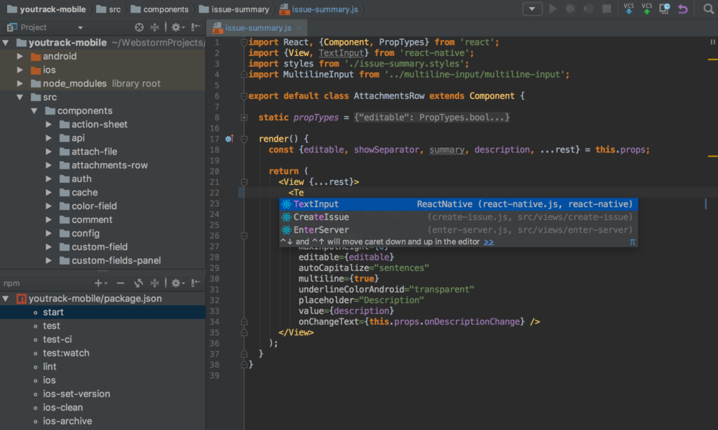 JetBrains WebStorm windows