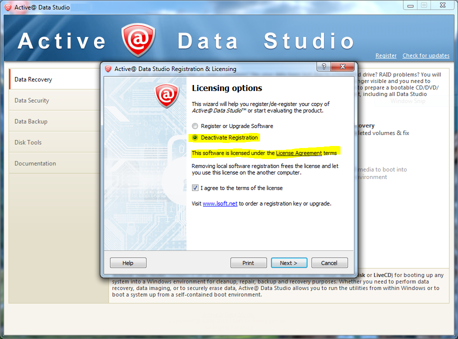 Active Data Studio windows